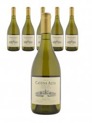 Catena Alta Chardonnay 2013 - 6bots