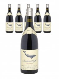 Hamilton Russell Southern Right Pinotage 2013 - 6bots