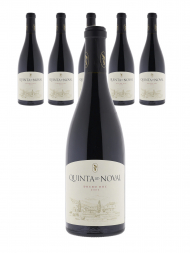 Quinta Do Noval Tinto 2007 ex-winery - 6bots
