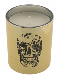 Modern Alchemy Candle 9129 Metallic Tumbler Gold Delft Skull