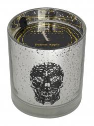 Modern Alchemy Candle 9135 Halloween Tumbler Skull Silver